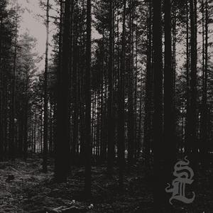 SVARTI LOGHIN - Skog - CD
