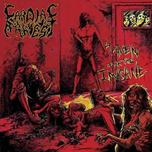 CARDIAC ARREST - Haven for the Insane - SLIPCASE-CD