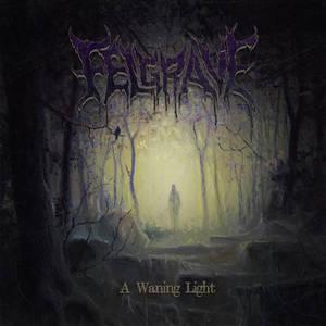 FELGRAVE - A Waning Light - CD